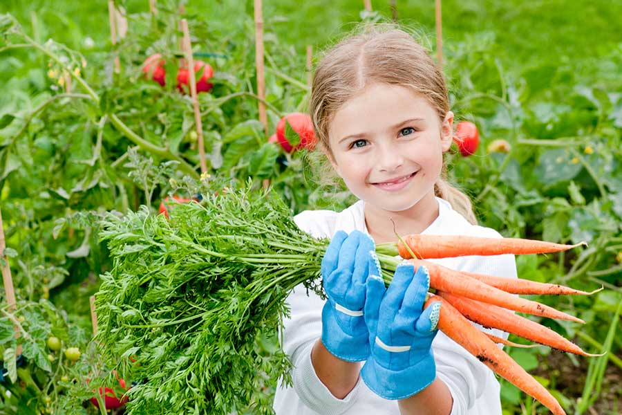 5 Resources for Starting and Making the Most of Your School Garden
